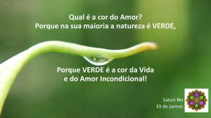 A Cor do Amor - Satori Rei