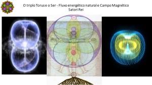 Triplo torus e o Ser - Satori Rei