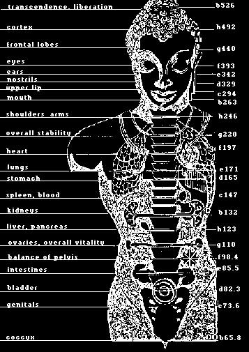 frequency_correspondence_body