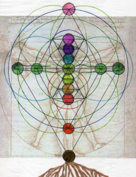 9 chakra system satori (2)