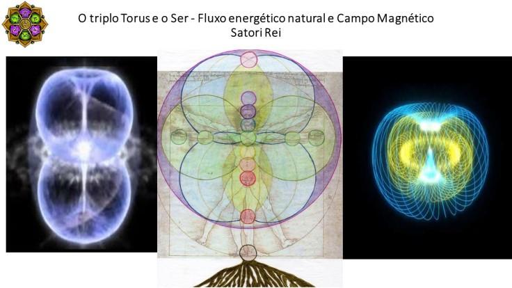 triple torus satori